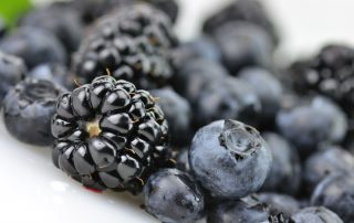antioxidants and essential oils