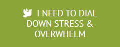Button Dial Down Stress & Overwhelm